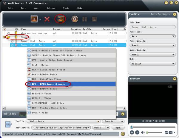 DivX to video converter